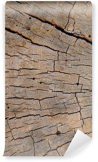 Fototapet av Vinyl Vertikal abstrakt bakgrund textur av vittrad Beach Wood