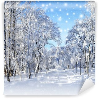Fototapet av Vinyl Vinter landskap, snöstorm