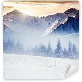 Fototapet av Vinyl Vinter