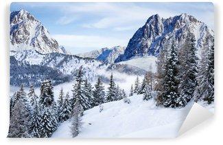 Fototapet av Vinyl Winter Wonderland