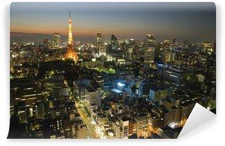 Vinylová Fototapeta 東京 夜景