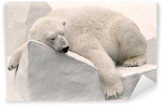 Vinylová Fototapeta Белый медведь спит.