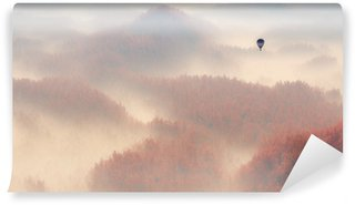 Vinylová Fototapeta Aerial of misty autumn pine tree forest with hot air balloon.