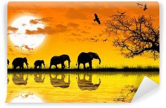 Vinylová Fototapeta Africa
