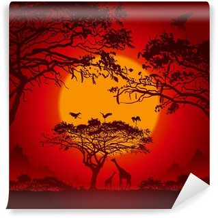 Vinylová Fototapeta African sunset