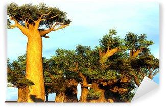 Vinylová Fototapeta Africké baobaby