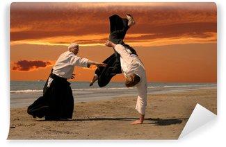 Vinylová Fototapeta Aikido při západu slunce