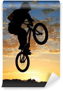 Vinylová Fototapeta Airborne bike