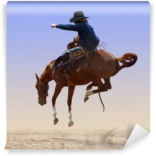 Vinylová Fototapeta Airborne Rodeo Bronco