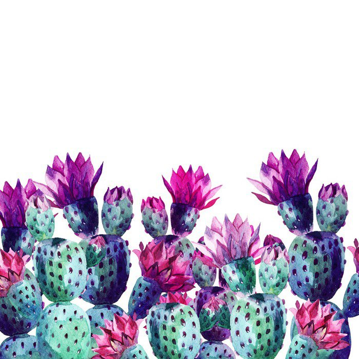 Vinylová Fototapeta Akvarel kaktusu - Vinylová Fototapeta