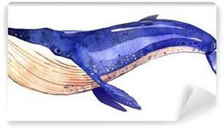 Vinylová Fototapeta Akvarel velryba, ručně malované ilustrace na bílém pozadí