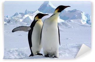 Vinylová Fototapeta Ale kde je jižní pól? (Emperor Penguins / Antarktida)