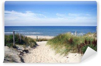 Vinylová Fototapeta Alej na pláž