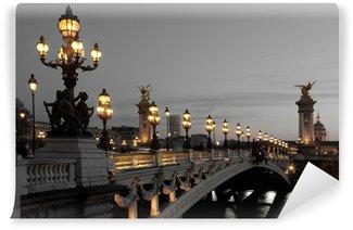 Vinylová Fototapeta Alexander III most, Paříž, Francie