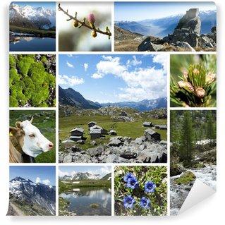 Fototapeta Winylowa Alps mountains - collage