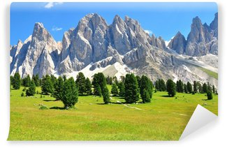 Vinylová Fototapeta Alps na léto