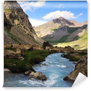 Fototapeta Winylowa Alps river