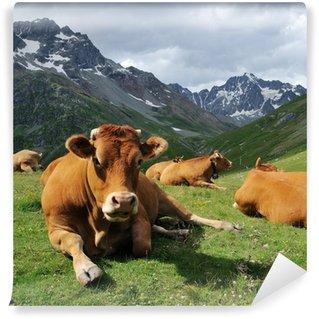 Vinylová Fototapeta Alpy kráva