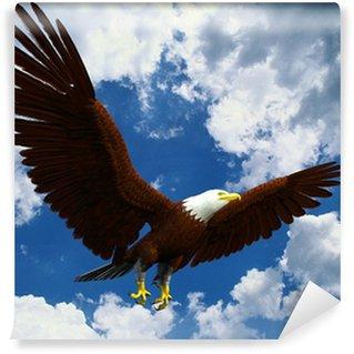 Vinylová Fototapeta Americký orel bělohlavý létání pryč