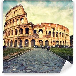 Vinylová Fototapeta Amfitoátr v římě
