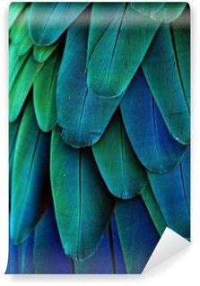 Vinylová Fototapeta Ara peří (modrá / zelená)