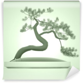 Vinylová Fototapeta Asijské bonsai strom na zelené