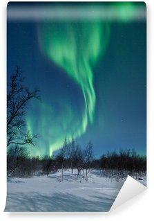 Vinylová Fototapeta Aurora Borealis ve Švédsku