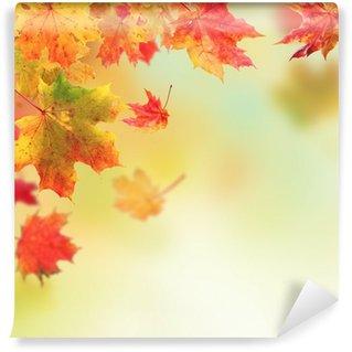 Vinylová Fototapeta Autumn leaves