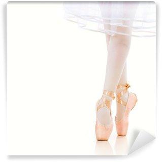 Vinylová Fototapeta Baletka Nohy detailní. Ballet Shoes. Pointe.