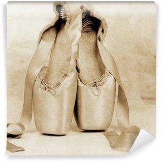 Vinylová Fototapeta Baletní pointe boty na podlaze