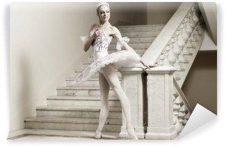 Vinylová Fototapeta Ballerina v baletu představují