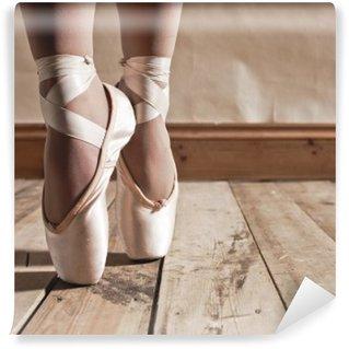 Vinylová Fototapeta Ballet Shoes na dřevěné podlahy