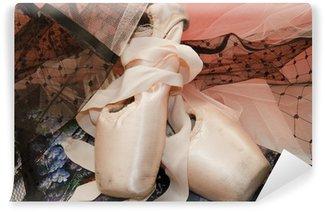 Vinylová Fototapeta Ballet Shoes