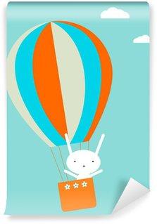 Vinylová Fototapeta Balloon létání