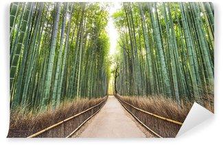 Vinylová Fototapeta Bamboo Forest, Kyoto, Japonsko