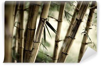 Vinylová Fototapeta Bamboo lesa v pozadí