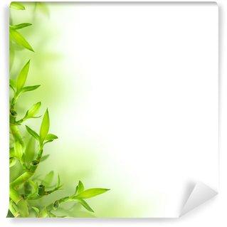 Vinylová Fototapeta Bambus a zelené listy, pozadí