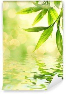 Vinylová Fototapeta Bambusové listy odráží v vykresleného vody