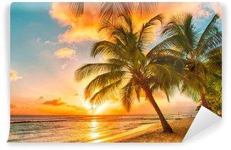 Vinylová Fototapeta Barbados