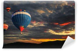 Vinylová Fototapeta Barevné horkovzdušný balón