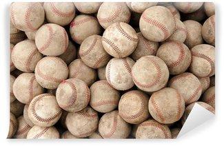 Vinylová Fototapeta Baseball_0486