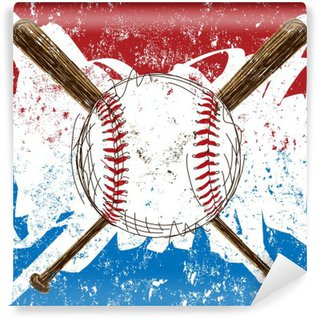 Vinylová Fototapeta Baseball Flag pozadí