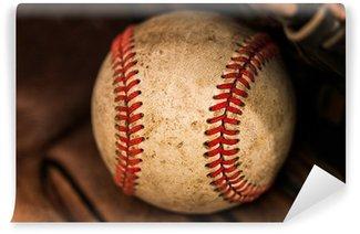 Vinylová Fototapeta Baseball rukavice s míčem