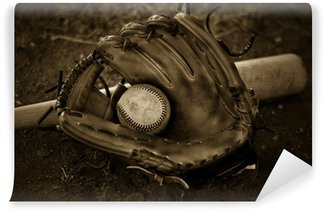 Vinylová Fototapeta Baseballová rukavice