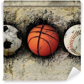 Vinylová Fototapeta Basketbal, baseball a fotbal