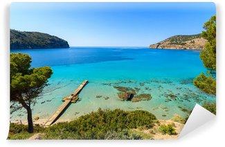 Vinylová Fototapeta Beach borovice mořský záliv hory, Camp de Mar, Mallorca
