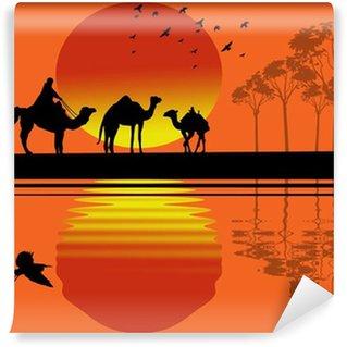 Vinylová Fototapeta Beduínské velbloudí karavana