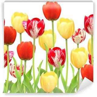 Vinylová Fototapeta Bezešvé hranice s tulipány