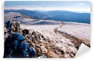 Vinylová Fototapeta Bieszczady hory pokryté mrazem.