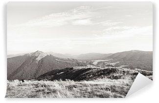 Vinylová Fototapeta Bieszczady Mountains oblast v Polsku